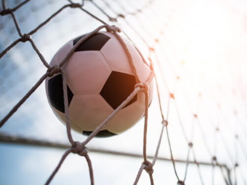 Fotbollen i målnätet